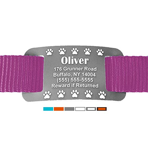 safe comfortable colorful silent personalized pet id
