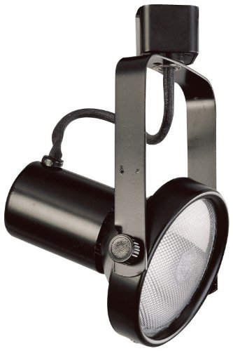 Elco Lighting ET630W Line Voltage PAR30 Gimbal Fixture with Barndoors