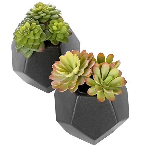 MyGift Set of 2 Realistic Artificial Succulent Plants in Matte Black Modern Geometric Ceramic Pots