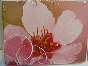 Amazon tender thoughts cards envelopes home kitchen tender thoughts cards envelopes m4hsunfo