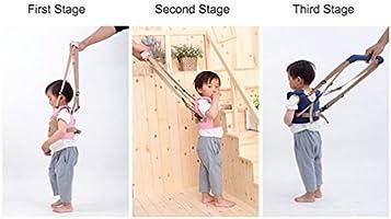 Reizbaby - Arnés de seguridad ajustable para bebés que aprenden a ...