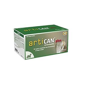Farmadiet Artican Plus Envase con 120 Comprimidos de Antioxidantes para Perros: Amazon.es: Productos para mascotas
