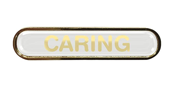 School Council Badge Gel Domed Resin Domed Choice of Colour Bar