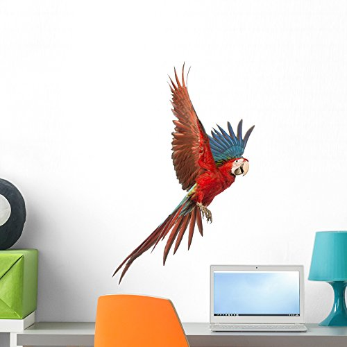 Wallmonkeys Green-winged Macaw Wall Decal by Peel and Stick Graphic (24 in H x 22 in W) WM304696 (Graphic Winged)