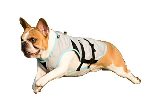 Suitical Dry Cooling Vest for your Dog - Small by Suitical (Image #1)