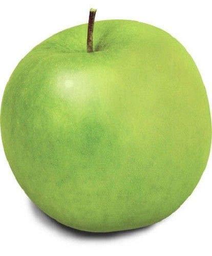 40 Seeds: USA Heirloom Organic Granny Smith Apple Tree 10-80 ()