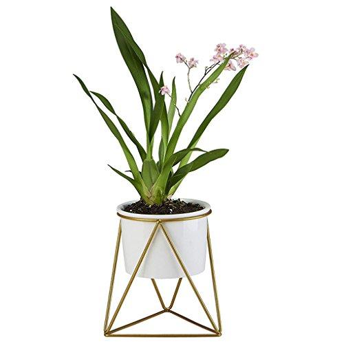 MuLuo Ceramic Succulents Plants Planter Geometric Iron Rack Holder Metal Stand Desktop Garden Cactus Flower Pot by MuLuo