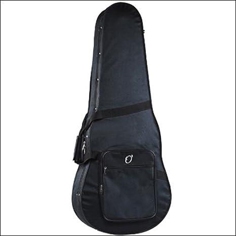Amazon.com: ESTUCHE GUITARRA ELECTRICA STYROFOAM SIN LOGO: Musical Instruments