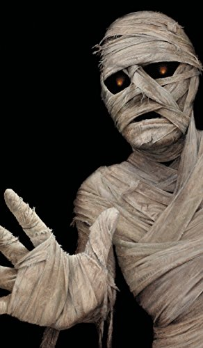 WOWindow Posters Mummy Halloween Window Decoration Includes One 34.5