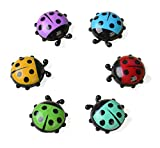 ladybug kitchen - BelleDeco Ladybug Kitchen Magnets Refrigerator Magnets Office Magnets Christmas & New Year Gift for Whiteboard & Dry Erase Board, Cute and Colorful Insect Design (6pcs per Set)