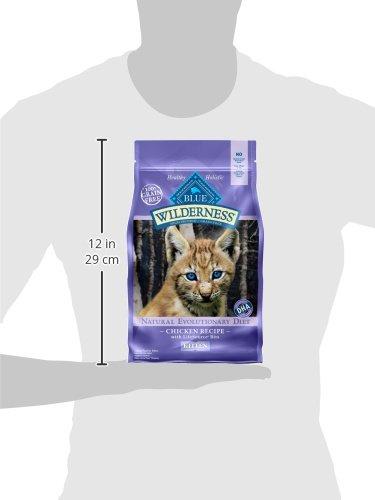 Blue-Buffalo-Wilderness-High-Protein-Dry-Kitten-Food