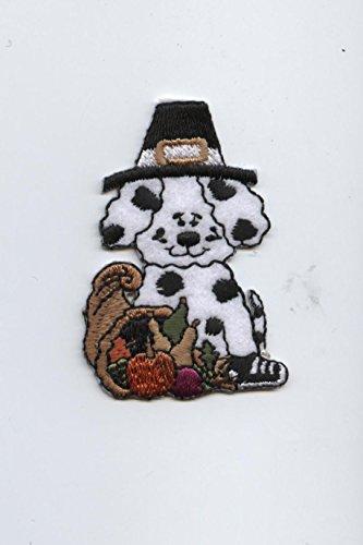 Pilgrim Dalmatian Puppy Dog with Thanksgiving Cornucopia Iron on Embroidered Patch