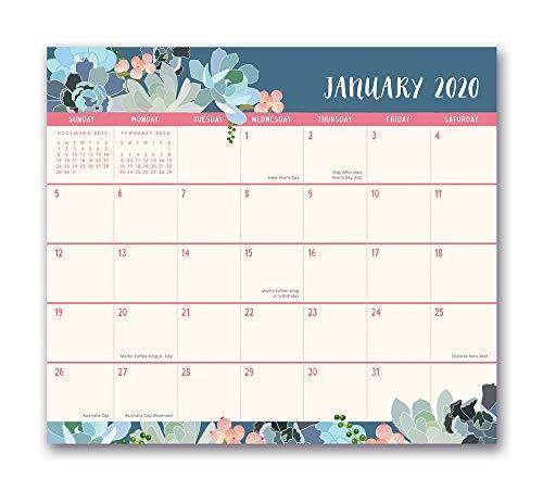 Orange Circle Studio 2020 Magnetic Monthly Calendar Pad, August 2019 - December 2020, Succulent Paradise