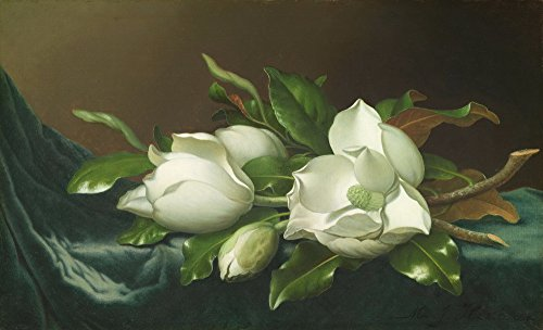 Martin Johnson Heade Giclee Canvas Print Paintings Poster Reproduction(Magnolias on Light Blue Velvet (Martin Johnson Heade Magnolia)
