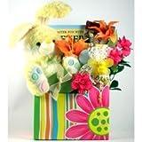 Hippity Hoppity, Easter Gift Basket with Plush Bunny