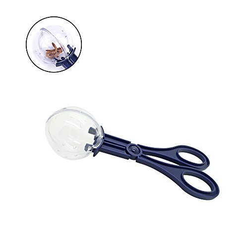 Hyihe Reptiles Feeding and Cleaning Tool, Lizard Beetle Insect Catch Clamp, Poop Cleaning Tool for Terrarium Aquarium Fish Tank