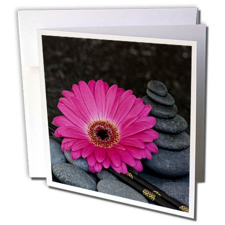 3dRose Andrea Haase Nature Photography - Pink Gerbera Flower, Chopsticks and Stone Tower - 12 Greeting Cards with envelopes (gc_266528_2)