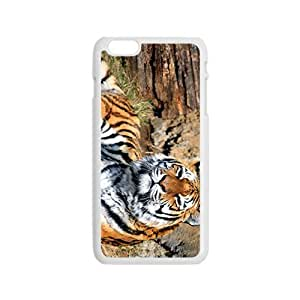 The Tiger on The Rock Hight Quality Plastic Samsung Galxy S4 I9500/I9502