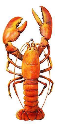 Atlantic Lobster Tails - 5