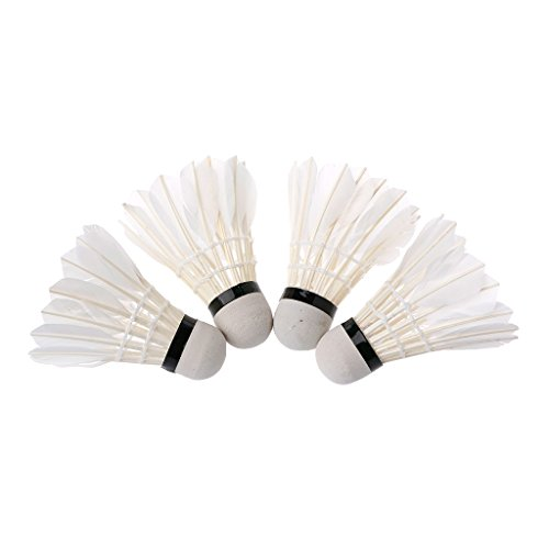 Sixinu 4pcs Dark Night Colorful LED Badminton Shuttlecock Birdies Lighting Feather