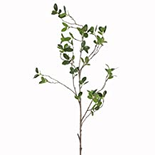 JAROWN Artificial Plants Branch with Green Leaves Silk Eucalyptus for Home Decoration DIY(2 pcs))