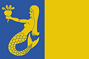 magFlags Large Flag Waasmunster vlag | Gemeentevlag Waasmunster | landscape flag | 1.35m² | 14.5sqft | 90x150cm | 3x5ft - 100% Made in Germany - long lasting outdoor flag