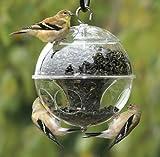 Trenton Gifts Globe Shaped Bird Feeder, Squirrel Proof Bird Feeder
