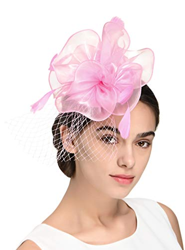 Fascinators Headband Tea Party Hats for Women Royal Wedding Hat Feather Mesh Hair Clip (4-Light Pink) ()