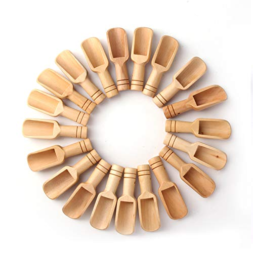 Sansheng 20PCS Mini wooden