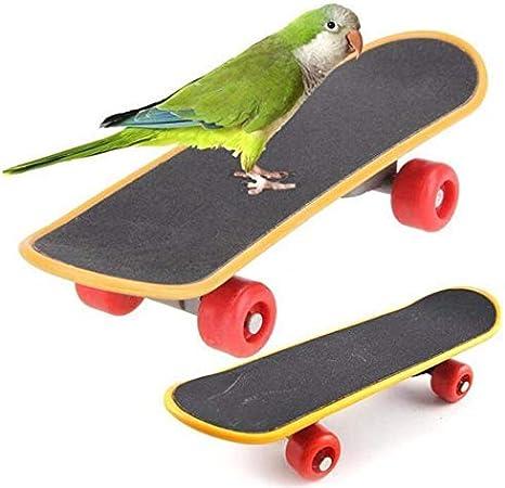 Pájaro Loro Juguetes Monopatín Soporte Percha De Ropa Para Parrot Funny Percha De Ropa Juguete Para Periquitos Periquitos Agapornis Cotorras 2 Piezas Mascotas