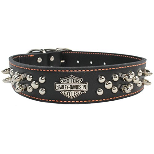 Harley Davidson Leather Spike Collar