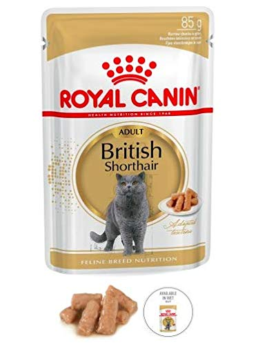 Maltbys' Stores 1904 Limited 48 x 85g (wet pouch) Royal Canin BRITISH SHORTHAIR IN GRAVY Breed Nutrition Cat Food