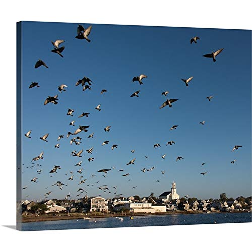 Cape Cod Fly-by Canvas Wall Art Print, ()