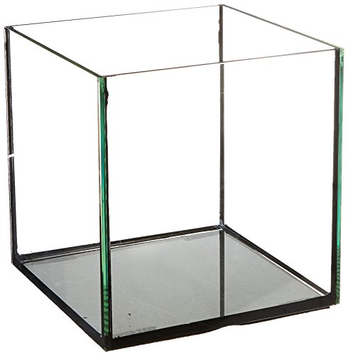 Deep Blue Professional ADB11441 Rimless Cube Aquarium Glass Tank, 8 by 8 by 8-Inch by Deep Blue Professional