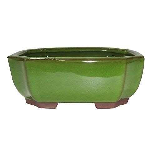 Brussel's Bonsai CGG117-6STG Rectangle Indent Glazed Ceramic Pot, 8