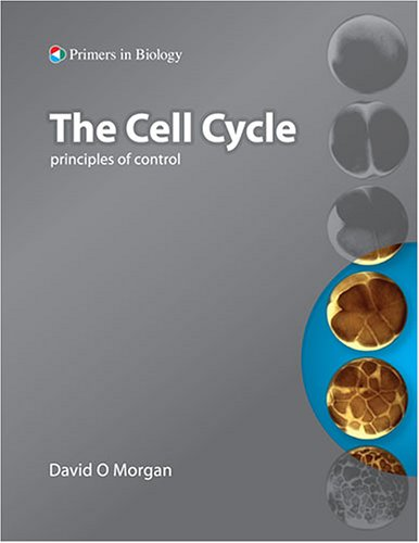 The Cell Cycle  Principles Of Control  Primers In Biology   Primers In Biology