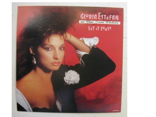 Gloria Estefan Poster Flat