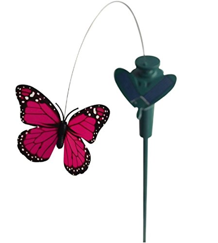 Solar Yard Stake Fluttering Insects, Solar or Battery Powered (Assorted Colors) (Butterfly) Review