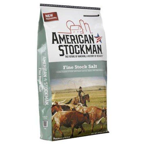 North American Salt Company Salt 41018 Fine Stock Silver ...