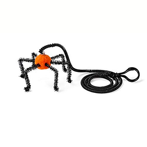 Ruri's Cat Spring Toys New Cat Toys Super Long Elastic Rope Best Gift for Kitty (Spider)