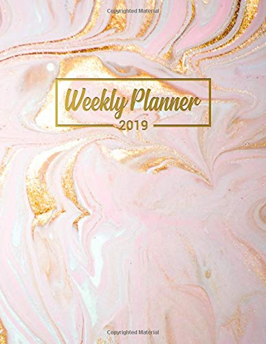 Password Log and Notebook Nifty Golden Phases of the Moon Two-Year Monthly Organizer with Phone Book Cute Galaxy Calendar and Agenda. 2019-2020 Pocket Planner