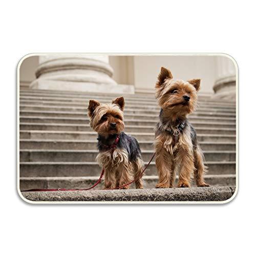 SHUANGRENDE Custom Decorative Door Mat Yorkshire Terrier Decor Rug Indoor/Outdoor Doormat 18X30 Inch Floor Mat