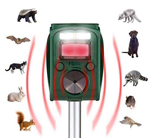 (PIGWO Animal Repellent Ultrasonic Outdoor- Solar Powered- Waterproof- Rodent Repeller- Effective & Powerful with Motion Activated -Repel All Pests Animals -Fox,Cat,Dog,Deer,Squirrels,Raccoon & More)