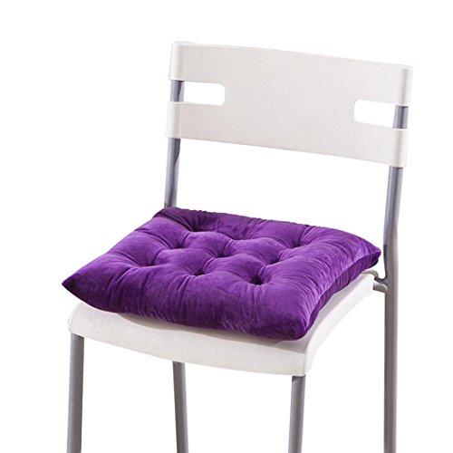 Tenworld Indoor Home Kitchen Office Seat Cushion Chair Pads 40x40cm (Desk Lamp Light Purple Body)