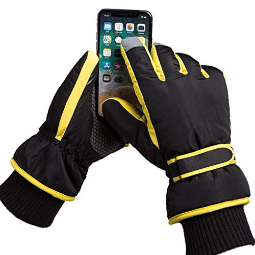 Beanie t bufanda Alpinismo Leather Seasons Pantalla guantes Gardening Packs Four y Riding ZAPOO