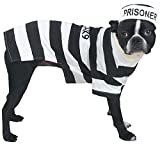 "Casual Canine Prison Pooch Costume for Dogs, 16"" Medium"