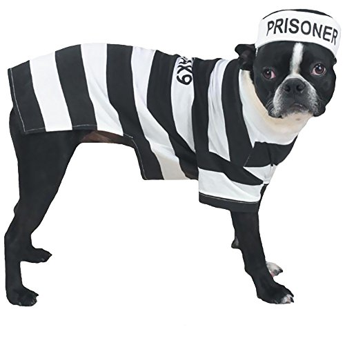 Matching Dog Costumes (Casual Canine Prison Pooch Costume for Dogs, 16