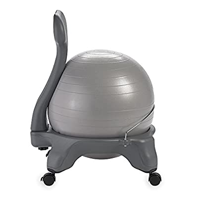 Gaiam Balance Ball Chairs