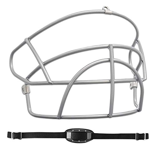 Champro Face Mask for H4Y Helmet, Silver – DiZiSports Store