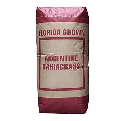 Hancock's Argentine Bahia Grass Seed (Coated) : Garden & Outdoor